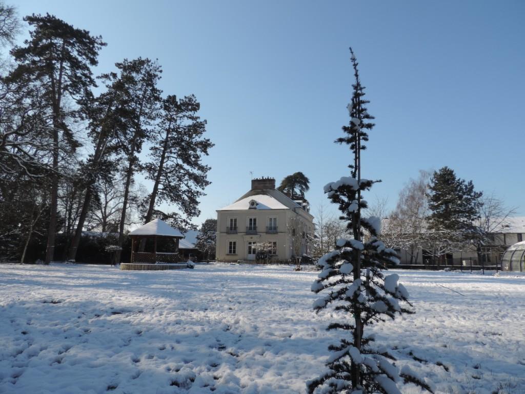 neige blanche sous ciel bleu